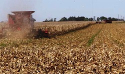 Roundup PowerMax herbicide