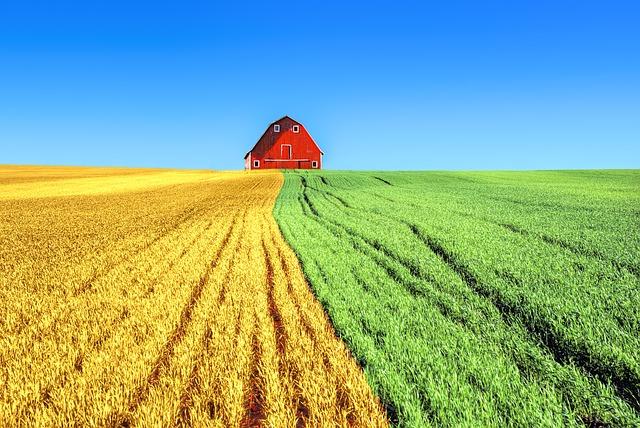 Let EZBuy Ag Be Your Wholesale Farm Chemical Supplier
